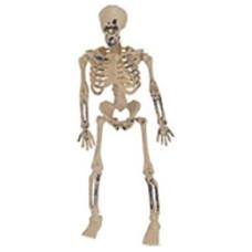 Dekoráció Halloween Csontváz 16cm 2db/csomag