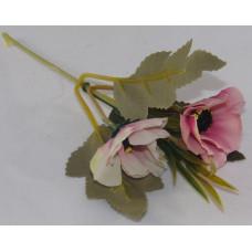 Szárazvirág Dekoráció 0182 Koronás Szellőrózsa Rózsaszín