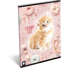 Füzet (A/4 L-C 87-32 Kis Bagoly Candy Cat) 10db/csomag
