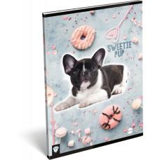 Füzet (A/4 L-C 87-32 Kis Bagoly Sweetie Pup) 10db/csomag
