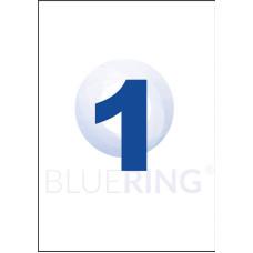 Etikett Cimke Bluering 210*297mm 1db/ív