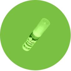Akrilfesték 20 ml Fényes Alma Zöld
