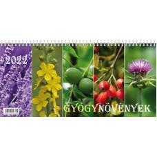 Naptár Asztali T-calendar 22 Képes Gyógynövények