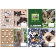 Füzetborító A/5 T-Creatív 21 Kitten 4*5 Minta 20db/csomag