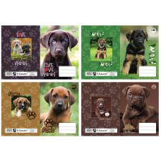 Füzetborító A/5 T-Creatív 21 Puppy 4*5 Minta 20db/csomag