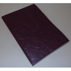 Beíró (A/4 Pvc 200 Lapos Fűzfő Kockás) 5db/csomag