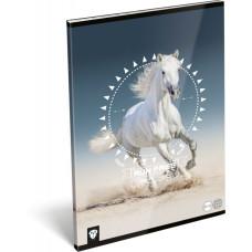 Füzet (A/4 L-C 87-32 Kis Bagoly Horse) 10db/csomag